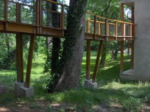 woodlandbridge