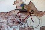 wood_bike_shelf