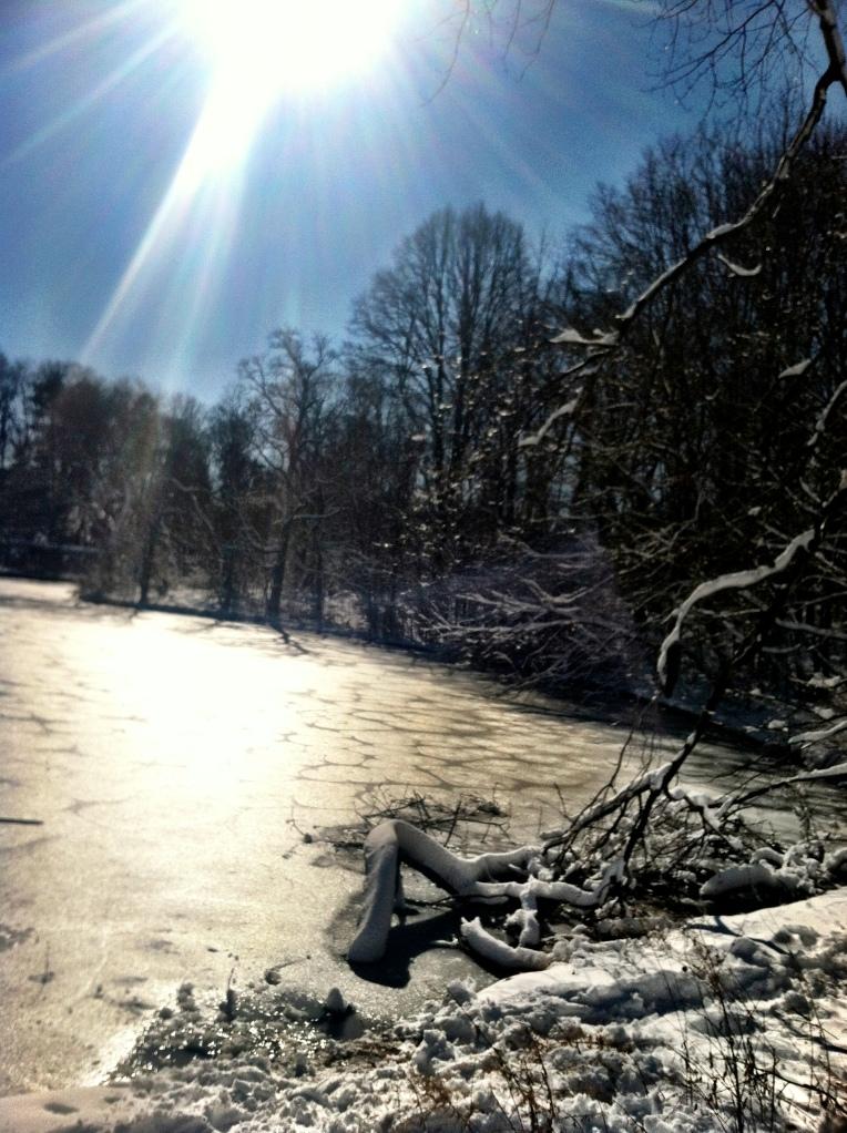 Prospect Park snow sled 3