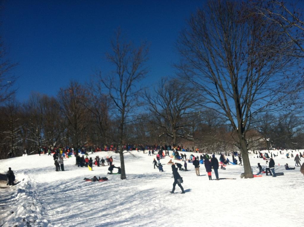 Prospect Park snow sledding