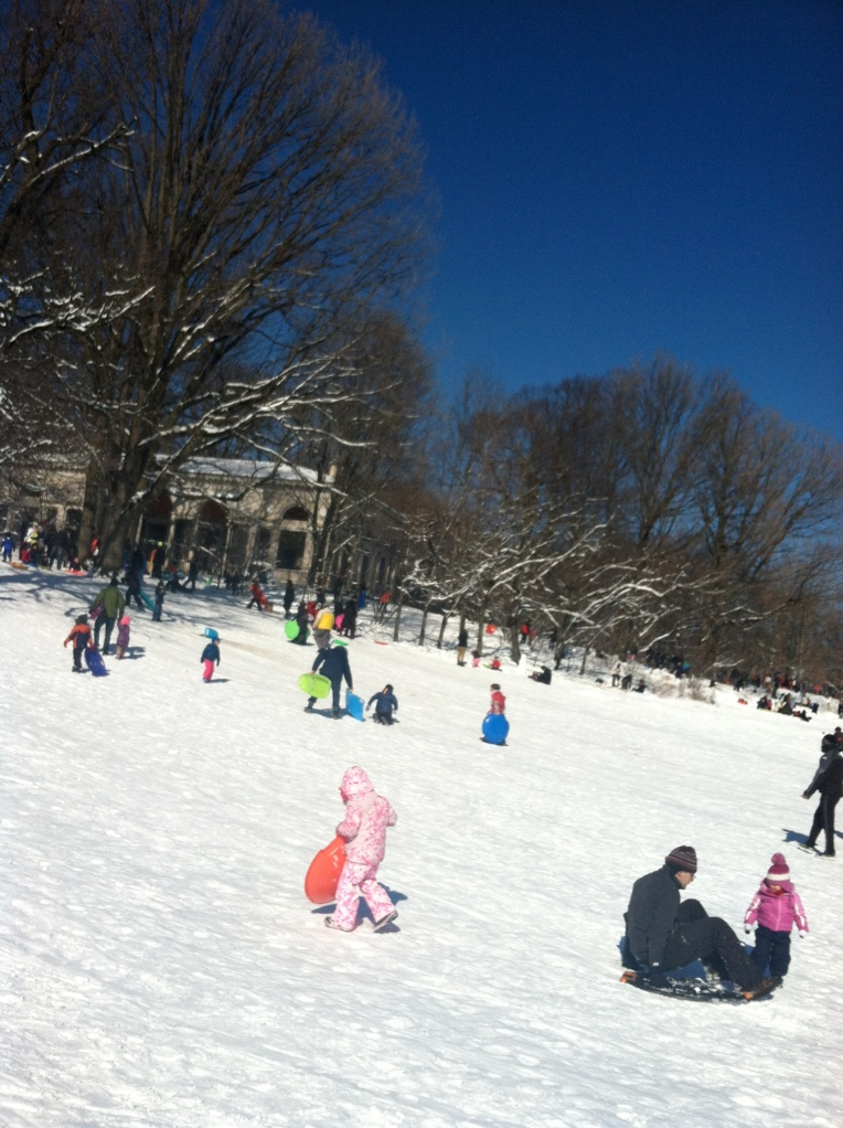 Prospect Park snow sled 4