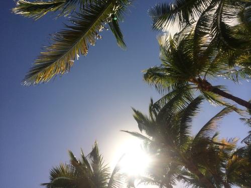 Trip Report: Riviera Maya, Mexico with Kids